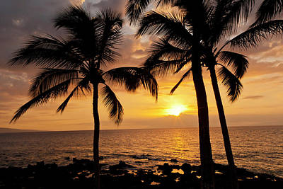Usa, Hawaii, Maui, Kihei Art Print by Jaynes Gallery