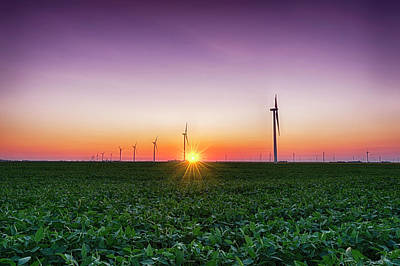 Usa, Indiana Soybean Field And Wind Art Print