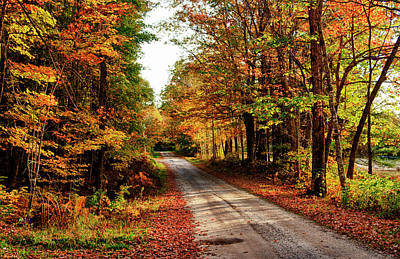 Maine Roads Photograph - Usa, Maine, Bethel by Bill Bachmann