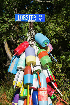 Maine Roads Photograph - Usa, Maine, Owls Head, Sign For Lobster by Walter Bibikow