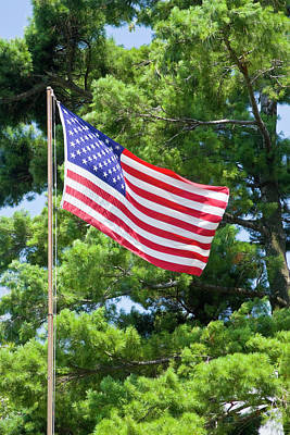 Flagpole Photograph - Usa, New York, St by Jaynes Gallery