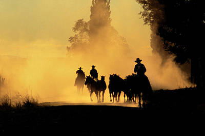 Working Cowboy Photograph - Usa, Oregon, Burns by Jaynes Gallery