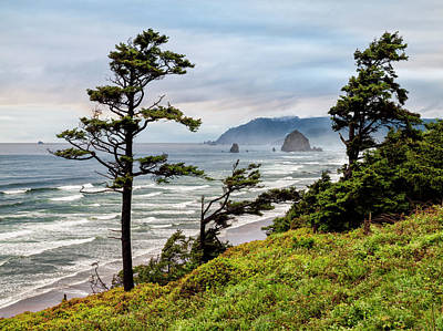 Usa, Oregon, Cannon Beach, View Art Print by Ann Collins