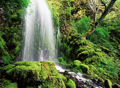 Usa, Oregon, Columbia Gorge Scenic Art Print