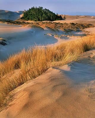 Usa, Oregon, Dunes National Recreation Art Print