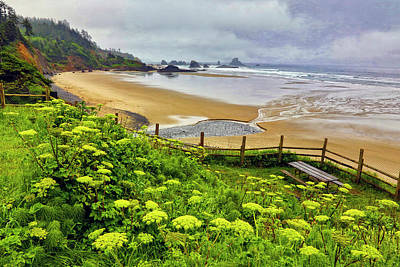 Carter Photograph - Usa, Oregon, Ecola State Park by Jaynes Gallery