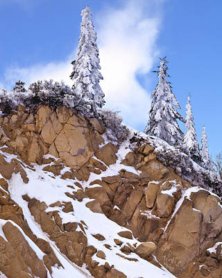 Ashland Photograph - Usa, Oregon, Mount Ashland by Jaynes Gallery