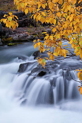 Carter Photograph - Usa, Oregon Rogue River Waterfalls by Jaynes Gallery
