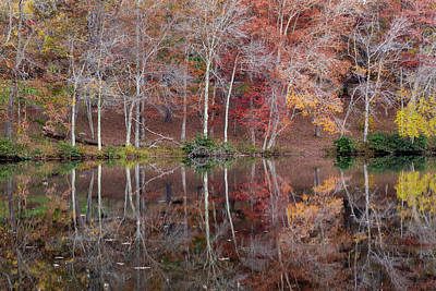 Cumberland Photograph - Usa, Tennessee, Cumberland Mountain by Jaynes Gallery