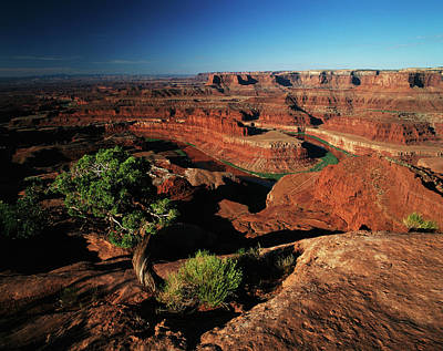 Goosenecks State Park Photograph - Usa, Utah, Dead Horse Point State Park by Adam Jones
