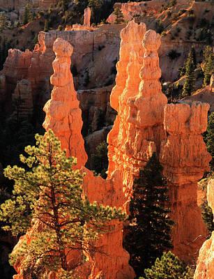 Fairyland Photograph - Usa, Utah, View Of Pinnacle At Bryce by Scott T. Smith