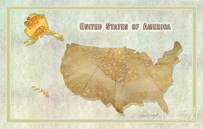 Usa Vintage Style Map Unique Design Digital And Painted Collage By Megan Duncanson Art Print by Megan Duncanson