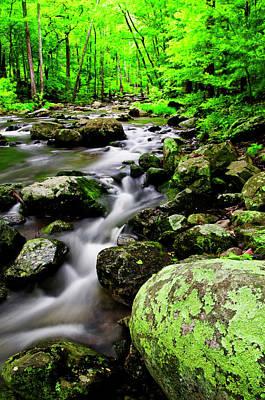 Shenandoah National Park Photograph - Usa, Virginia, Shenandoah National Park by Jaynes Gallery