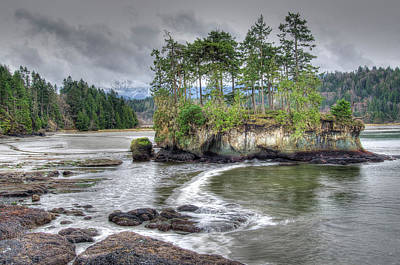 Stormy Tree Photograph - Usa, Washington, Salt Creek by Jaynes Gallery