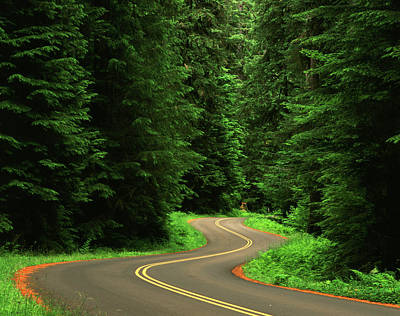 Olympic National Park Photograph - Usa, Washington State, Olympic by Adam Jones