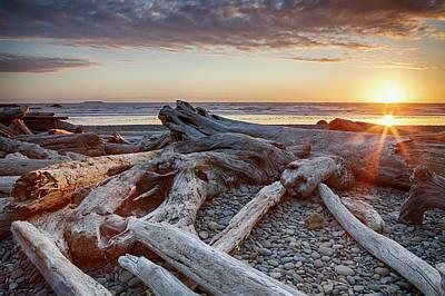 Driftwood Wall Art - Photograph - Usa, Washington State, Olympic National by Bryan Mullennix