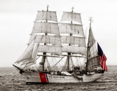 Photograph - Uscg Eagle 006 by Jeff Stallard
