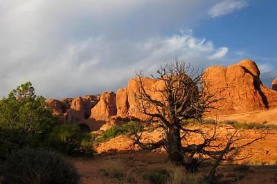 Photograph - Utah 2 by Nina Donner