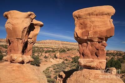 Photograph - Utah Oddities by Adam Jewell