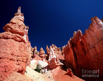 Photograph - Utah - Queens Garden 1 by Terry Elniski