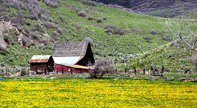 Jerry Sodorff Royalty-Free and Rights-Managed Images - Utah Ranch 482 by Jerry Sodorff