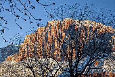 Utah Usa View Of The Watchman In Zion Art Print by Scott T. Smith