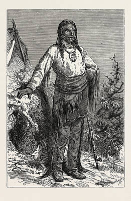 Indian Chief Drawing - Ute Indian Chief by English School
