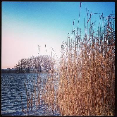 Iphone 4s Photograph - #utopenec #pond #mysliborice #morava by Jan Kratochvil