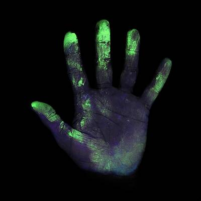 Hand Washing Photograph - Uv Light Showing Bacteria On Hand by Science Photo Library