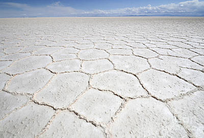 Photograph - Uyuni Salt Desert Bolivia by Bob Christopher