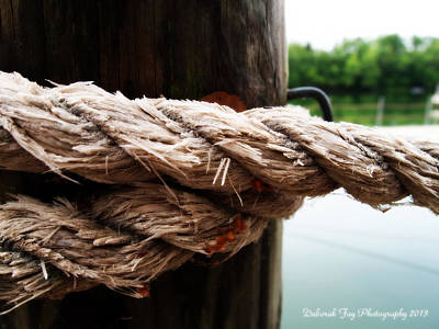 Art Print featuring the photograph V2- Weathered Rope On The Dock  by Deborah Fay