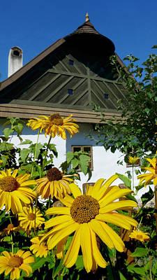 Vacation House With Flower Garden Czech Moravian Highlands Czech Original by Walter Novak