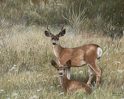 Buck And Doe Art Painting - Vacation In Montana by Mary Ann King