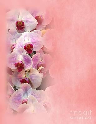 Valentine Theme With Beautiful Orchids Art Print
