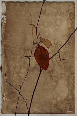Red Leaf Digital Art - Valentine Wishes by Ron Jones