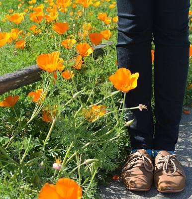 Valery's Shoes Art Print by Lisa Lieberman