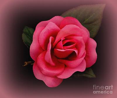 Photograph - Valintine Rose by Greg Moores