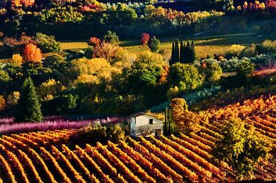 Photograph - Valle Di Montepulciano by John Galbo
