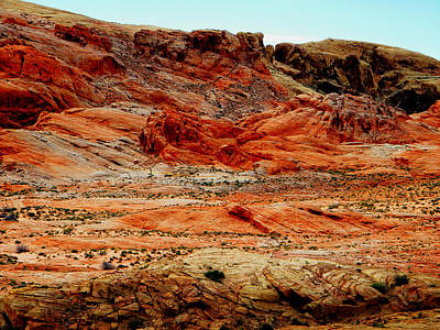 Photograph - Valley Of Fire High Desert by Frank Wilson