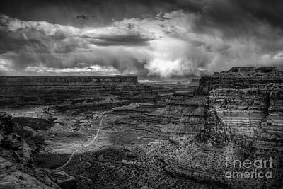 Photograph - Valley Floor Trail by David Waldrop