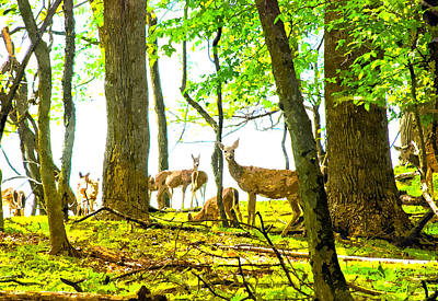 Digital Art - Valley Forge Deer by Rick Mosher