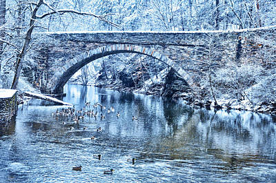 Valley Green Ducks In Winter Art Print by Bill Cannon