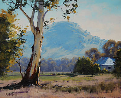 Sheep Grazing Painting - Valley Gum Tree by Graham Gercken
