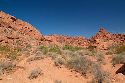 Photograph - Valley Of Fire 13 by Richard J Cassato