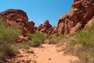 Photograph - Valley Of Fire 14 by Richard J Cassato