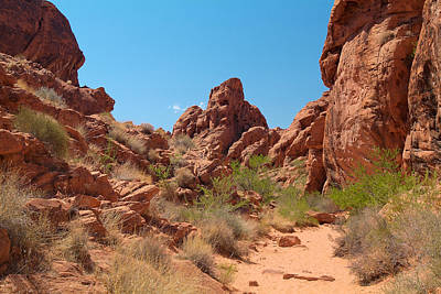 Photograph - Valley Of Fire 16 by Richard J Cassato