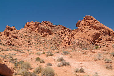 Photograph - Valley Of Fire 18 by Richard J Cassato