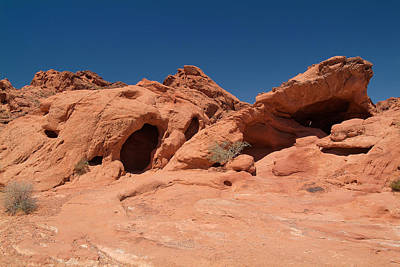 Photograph - Valley Of Fire 19 by Richard J Cassato