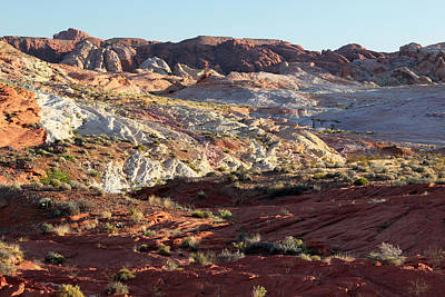 Photograph - Valley Of Fire Formations by John Orsbun