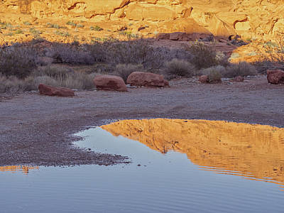 Photograph - Valley Of Fire by Marianne Campolongo
